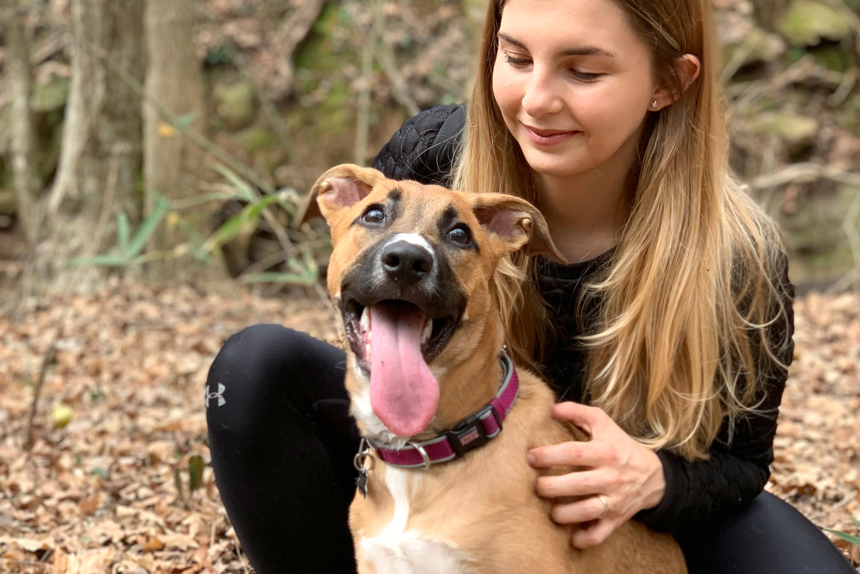 Animal rescue image